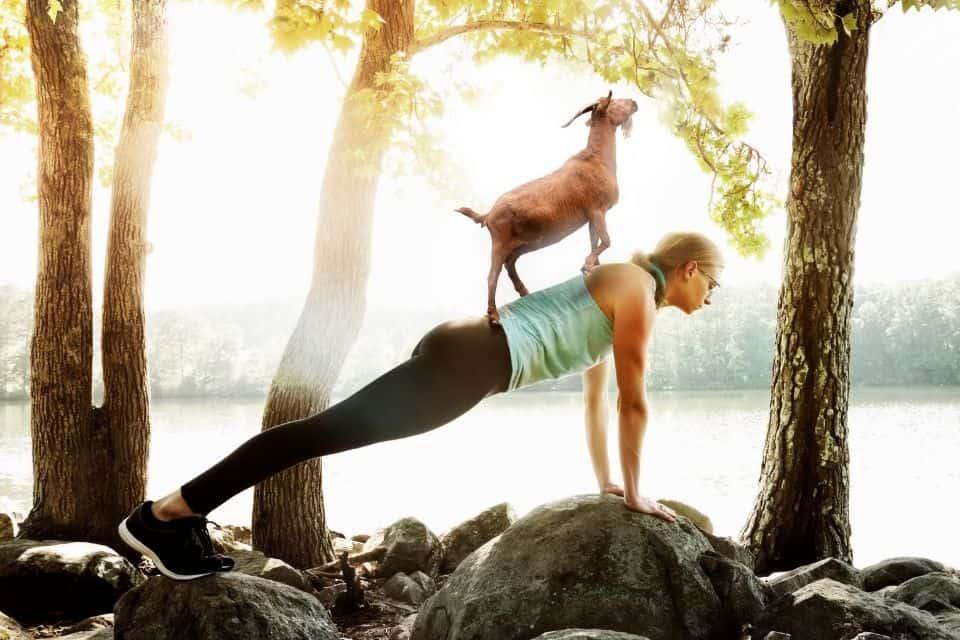 7 Benefits of Doing Goat Yoga